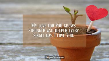My love for you grows stronger and deeper every single day. I love you. I Love You Quotes