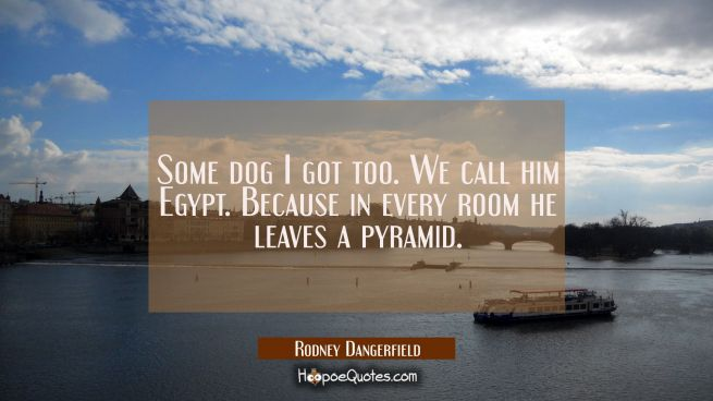 Some dog I got too. We call him Egypt. Because in every room he leaves a pyramid.