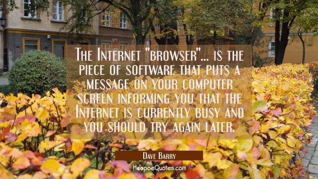 "The Internet ""browser""... is the piece of software that puts a message on your computer screen info"