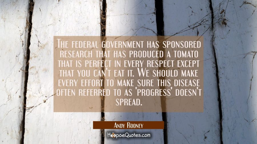 The federal government has sponsored research that has produced a tomato that is perfect in every r Andy Rooney Quotes