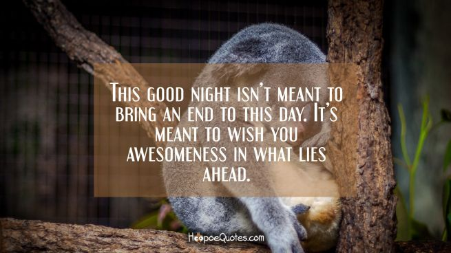 This good night isn't meant to bring an end to this day. It's meant to wish you awesomeness in what lies ahead.