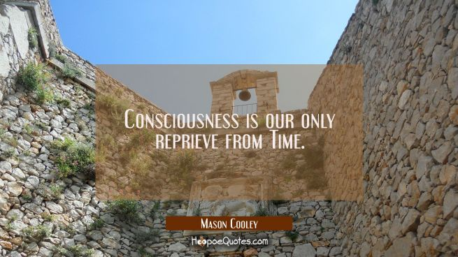 Consciousness is our only reprieve from Time.