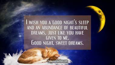 I wish you a good night's sleep and an abundance of beautiful dreams, just like you have given to me. Good night, sweet dreams. Good Night Quotes