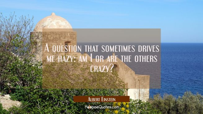 A question that sometimes drives me hazy: am I or are the others crazy?