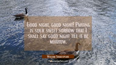 Good night good night! Parting is such sweet sorrow that I shall say good night till it be morrow. William Shakespeare Quotes