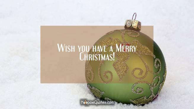 Wish you have a Merry Christmas!