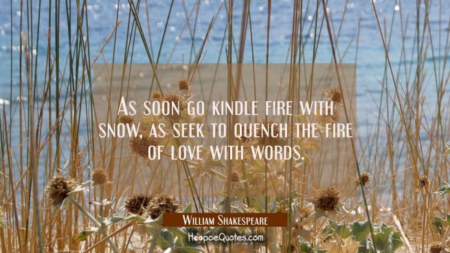 As soon go kindle fire with snow as seek to quench the fire of love with words.