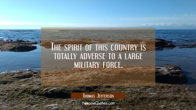 The spirit of this country is totally adverse to a large military force.