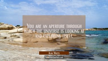 You are an aperture through which the universe is looking at and exploring itself. Alan Watts Quotes