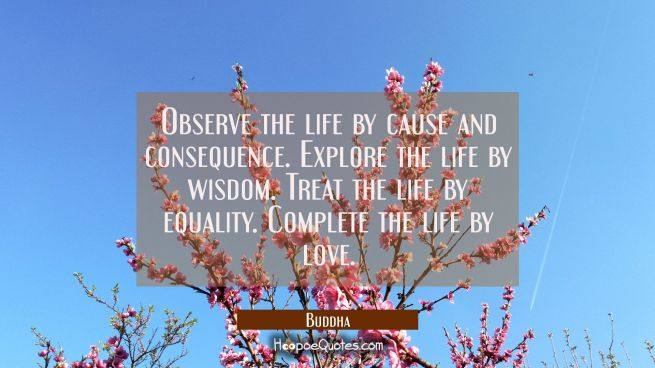 Observe the life by cause and consequence. Explore the life by wisdom. Treat the life by equality.