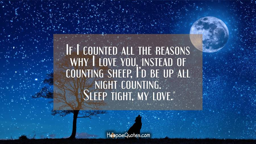 If I counted all the reasons why I love you, instead of counting sheep, I'd be up all night counting. Sleep tight, my love. Good Night Quotes