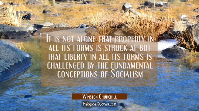 It is not alone that property in all its forms is struck at but that liberty in all its forms is ch