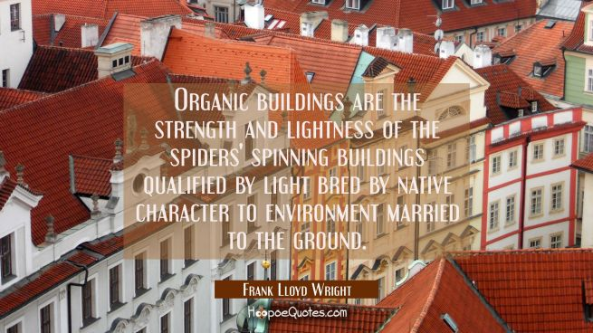 Organic buildings are the strength and lightness of the spiders' spinning buildings qualified by li