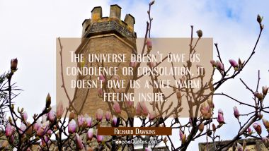 The universe doesn't owe us condolence or consolation, it doesn't owe us a nice warm feeling inside