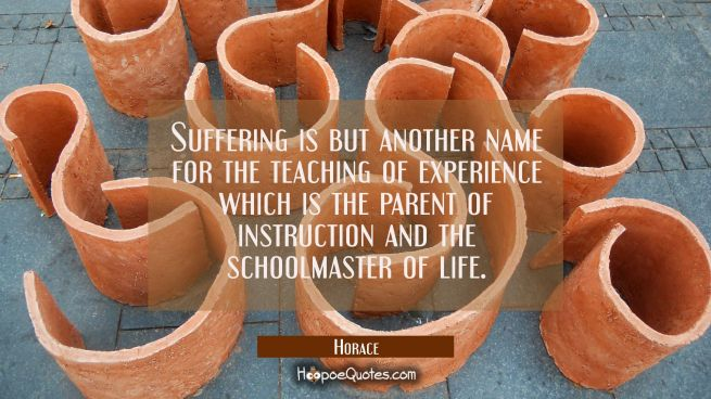 Suffering is but another name for the teaching of experience which is the parent of instruction and