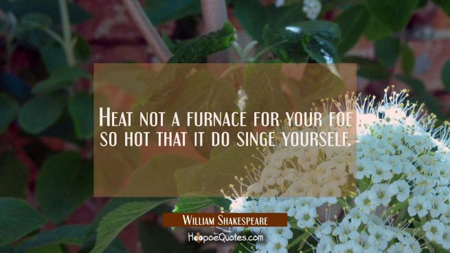Heat not a furnace for your foe so hot that it do singe yourself.