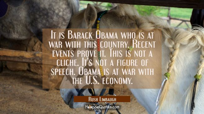 It is Barack Obama who is at war with this country. Recent events prove it. This is not a cliche. I