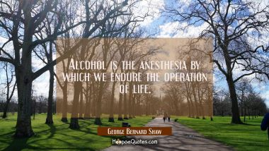 Alcohol is the anesthesia by which we endure the operation of life.