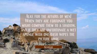 Alas for the affairs of men! When they are fortunate you might compare them to a shadow, and if the