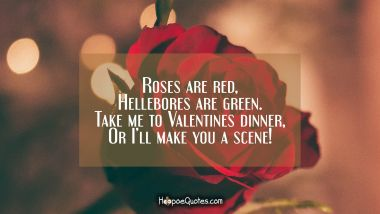 Roses are red, Hellebores are green, Take me to Valentines dinner, Or I'll make you a scene! Valentine's Day Quotes