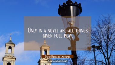 Only in a novel are all things given full play.