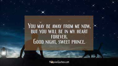 You may be away from me now, but you will be in my heart forever. Good night, sweet prince. Good Night Quotes