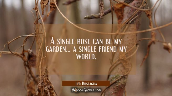 A single rose can be my garden... a single friend my world.