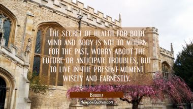 The secret of health for both mind and body is not to mourn for the past worry about the future or Buddha Quotes