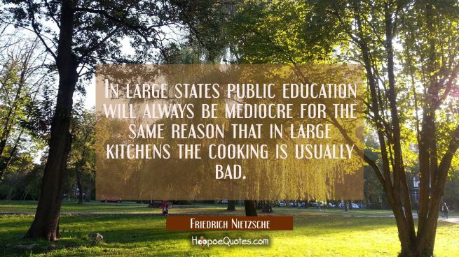 In large states public education will always be mediocre for the same reason that in large kitchens