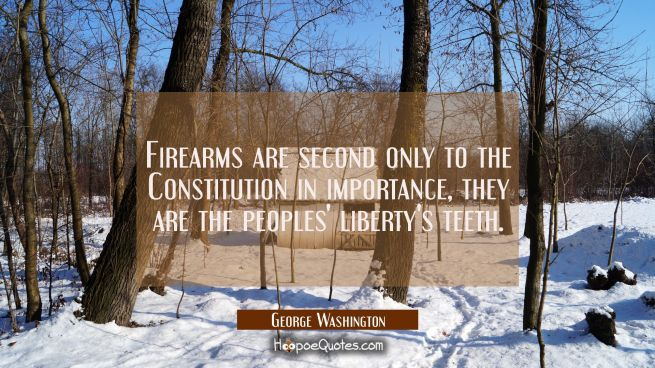 Firearms are second only to the Constitution in importance, they are the peoples' liberty's teeth.