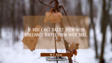 If you can't dazzle them with brilliance baffle them with bull.