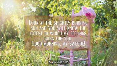 Look at the brightly burning sun and you will know the extent to which my feelings burn for you. Good morning, my sweetie! Good Morning Quotes