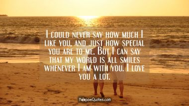 I could never say how much I like you, and just how special you are to me. But I can say that my world is all smiles whenever I am with you. I love you a lot. I Love You Quotes
