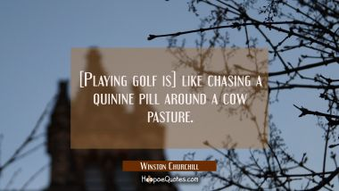 [Playing golf is] like chasing a quinine pill around a cow pasture.