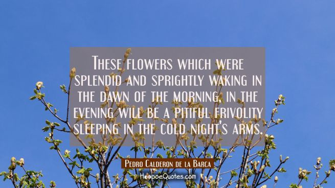 These flowers which were splendid and sprightly waking in the dawn of the morning in the evening wi