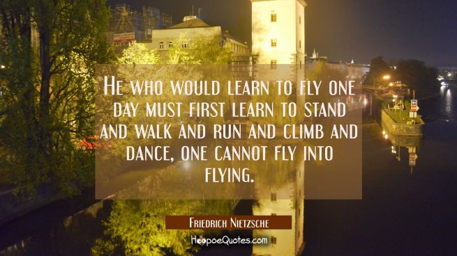 He who would learn to fly one day must first learn to stand and walk and run and climb and dance, o