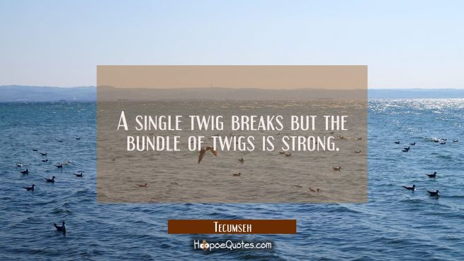 A single twig breaks but the bundle of twigs is strong.
