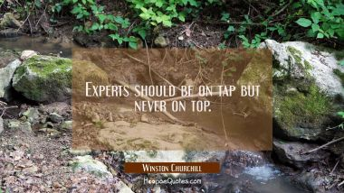 Experts should be on tap but never on top.