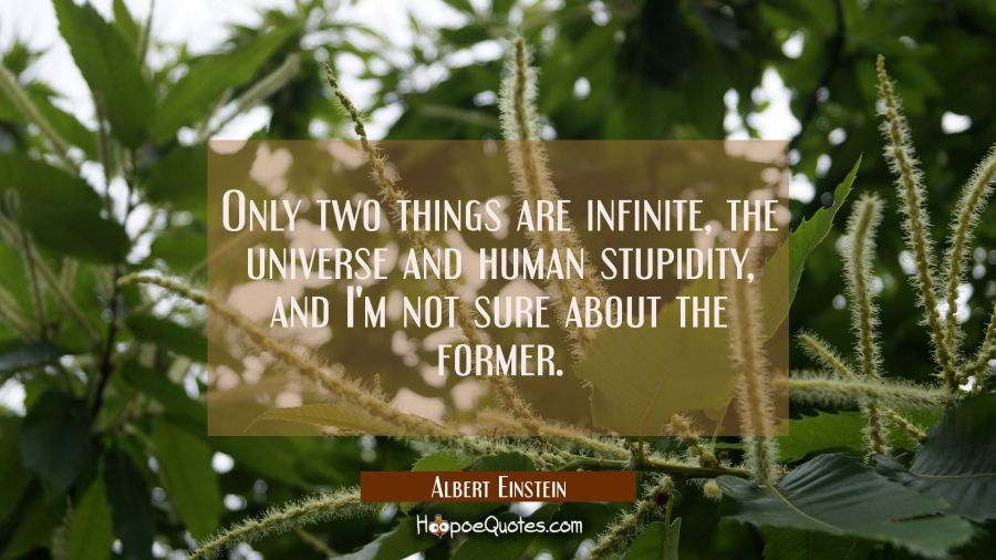 Only two things are infinite the universe and human stupidity and I'm not sure about the former. Albert Einstein Quotes