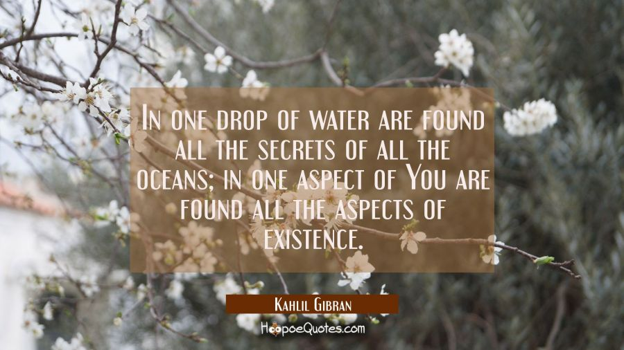In one drop of water are found all the secrets of all the oceans; in one aspect of You are found all the aspects of existence. Kahlil Gibran Quotes