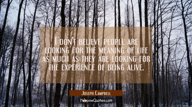 I don't believe people are looking for the meaning of life as much as they are looking for the expe