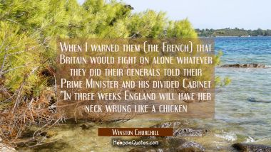 When I warned them (the French) that Britain would fight on alone whatever they did their generals Winston Churchill Quotes