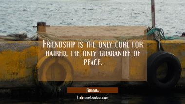 Friendship is the only cure for hatred the only guarantee of peace. Buddha Quotes
