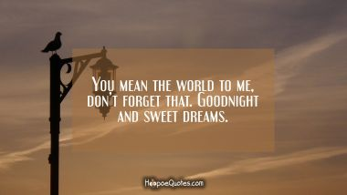 You mean the world to me, don't forget that. Goodnight and sweet dreams. Quotes