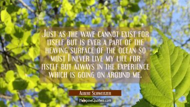 Just as the wave cannot exist for itself but is ever a part of the heaving surface of the ocean so