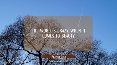 The world's crazy when it comes to beauty. Richard Bach Quotes