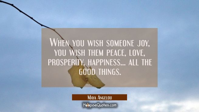When you wish someone joy you wish them peace love prosperity happiness... all the good things.