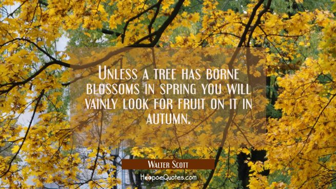 Unless a tree has borne blossoms in spring you will vainly look for fruit on it in autumn.