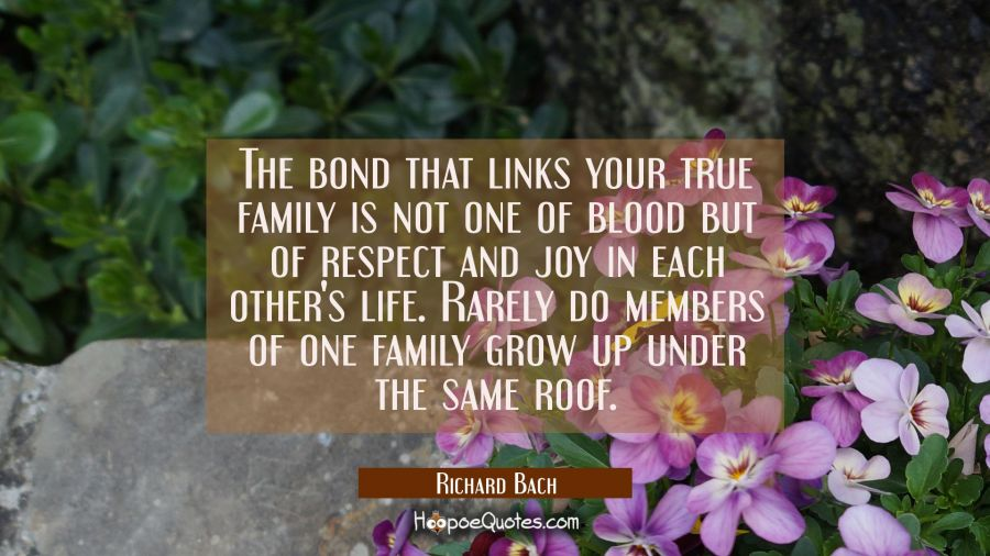 The bond that links your true family is not one of blood but of respect and joy in each other's lif Richard Bach Quotes