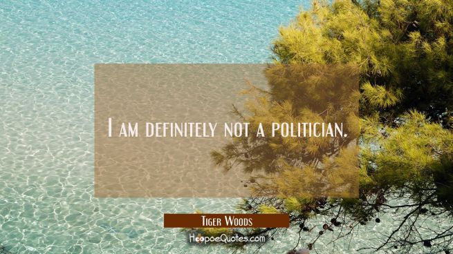 I am definitely not a politician.